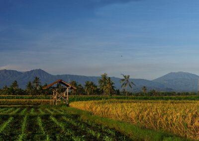 Raung volcano panorama, East Java